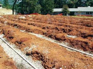 Rows of soil and piping for wastewater treatment